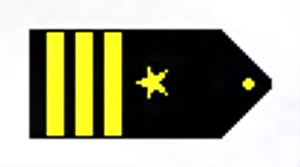 Commander Insignias