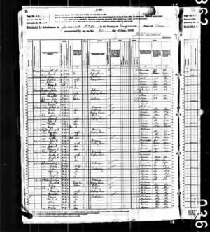1880 Van Zandt County, Texas Census