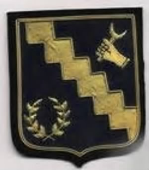 98th Bomb Group Patch