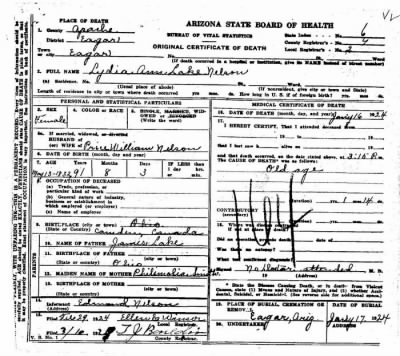 Lydia Ann Lake Nelson death certificate - Fold3.com
