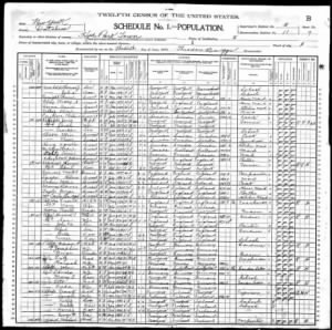 FDR 1900 Federal Census