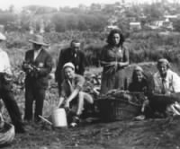 A group of Jews tend one of the vegetable gardens in the Kovno ghetto.jpg