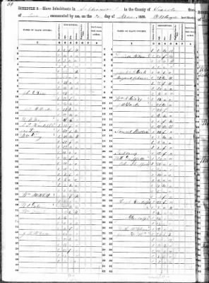 1850 Census- Slave Schedules